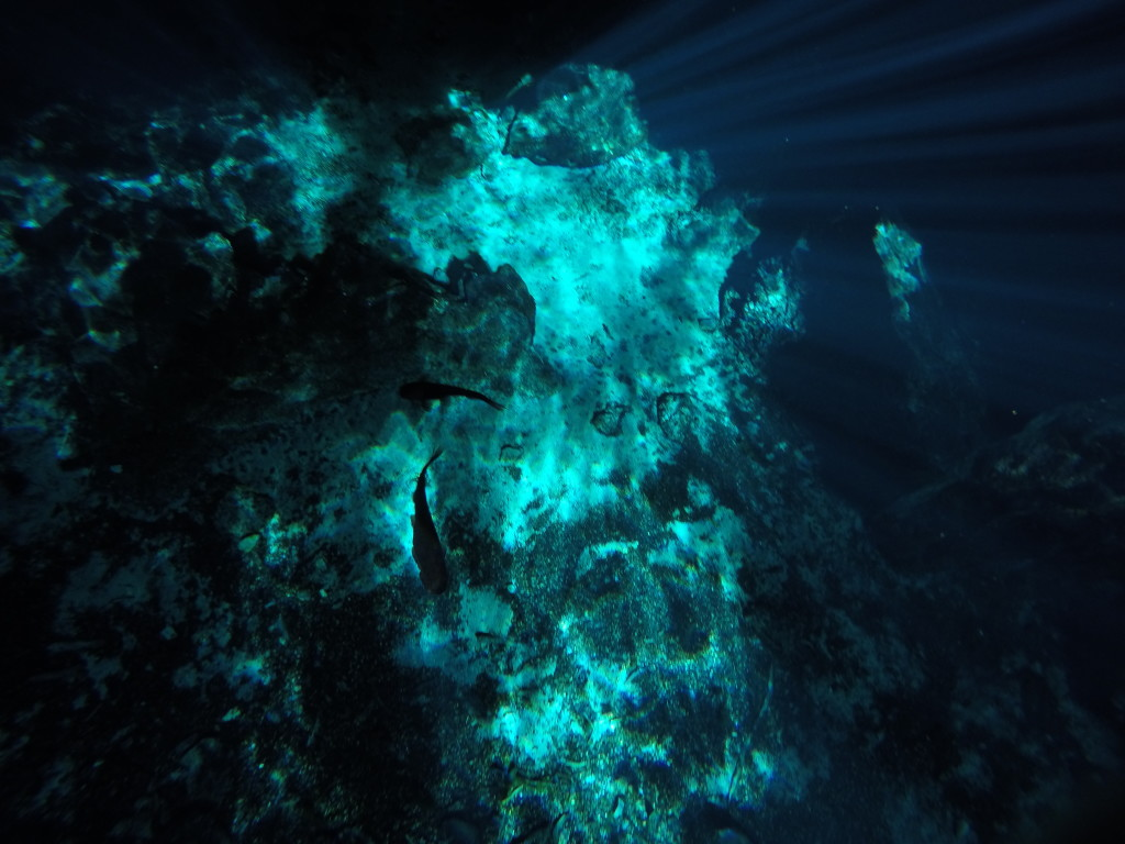 Grand-Cenote-Tulum