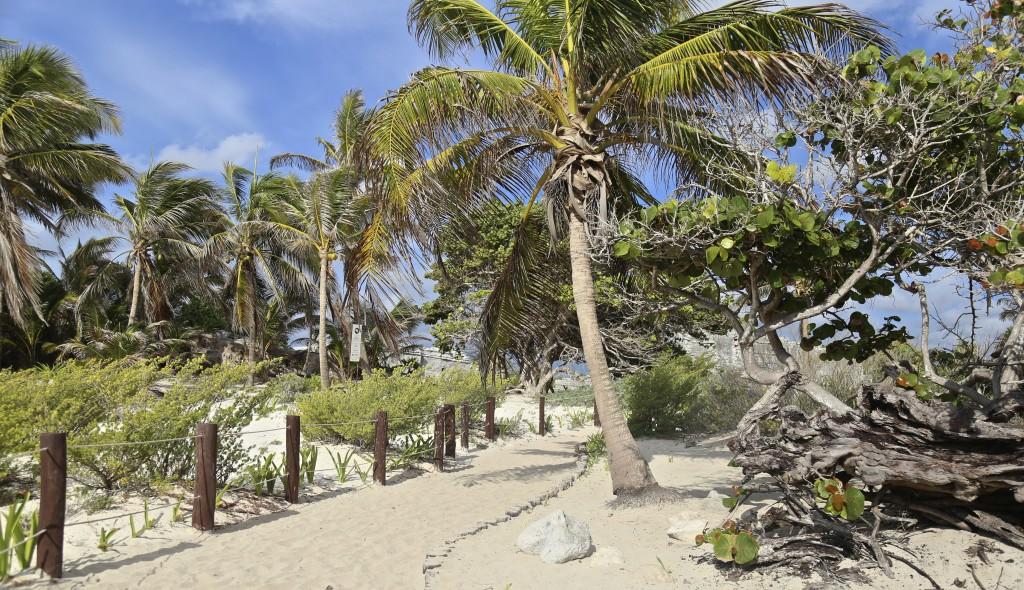 ruines-tulum-mexico
