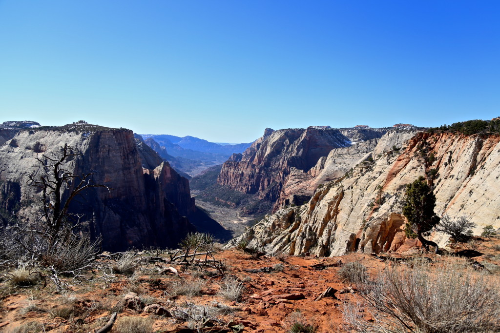 zion-national-park-observation-point-utah