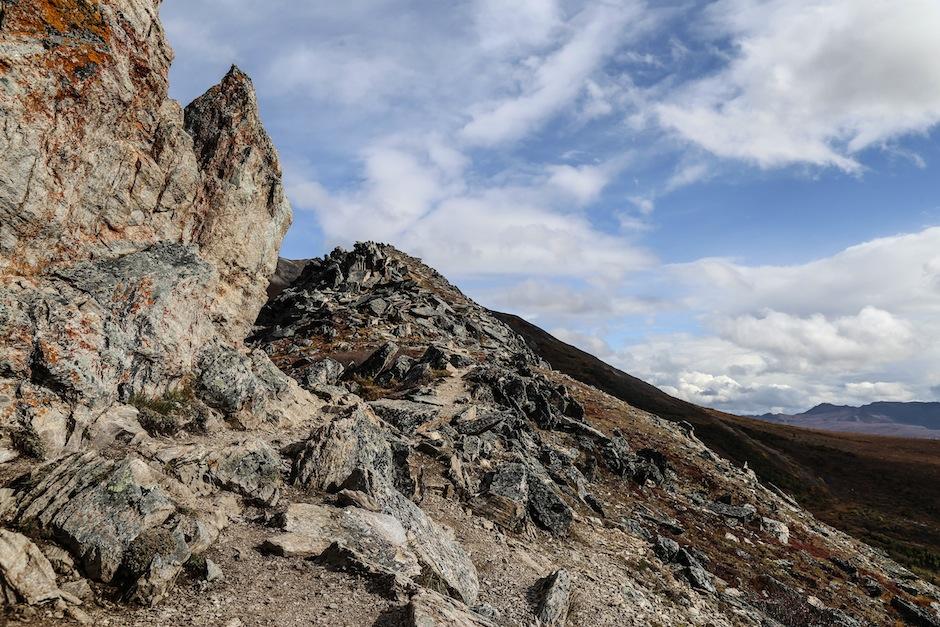 alaska-usa-denali-national-park-trail