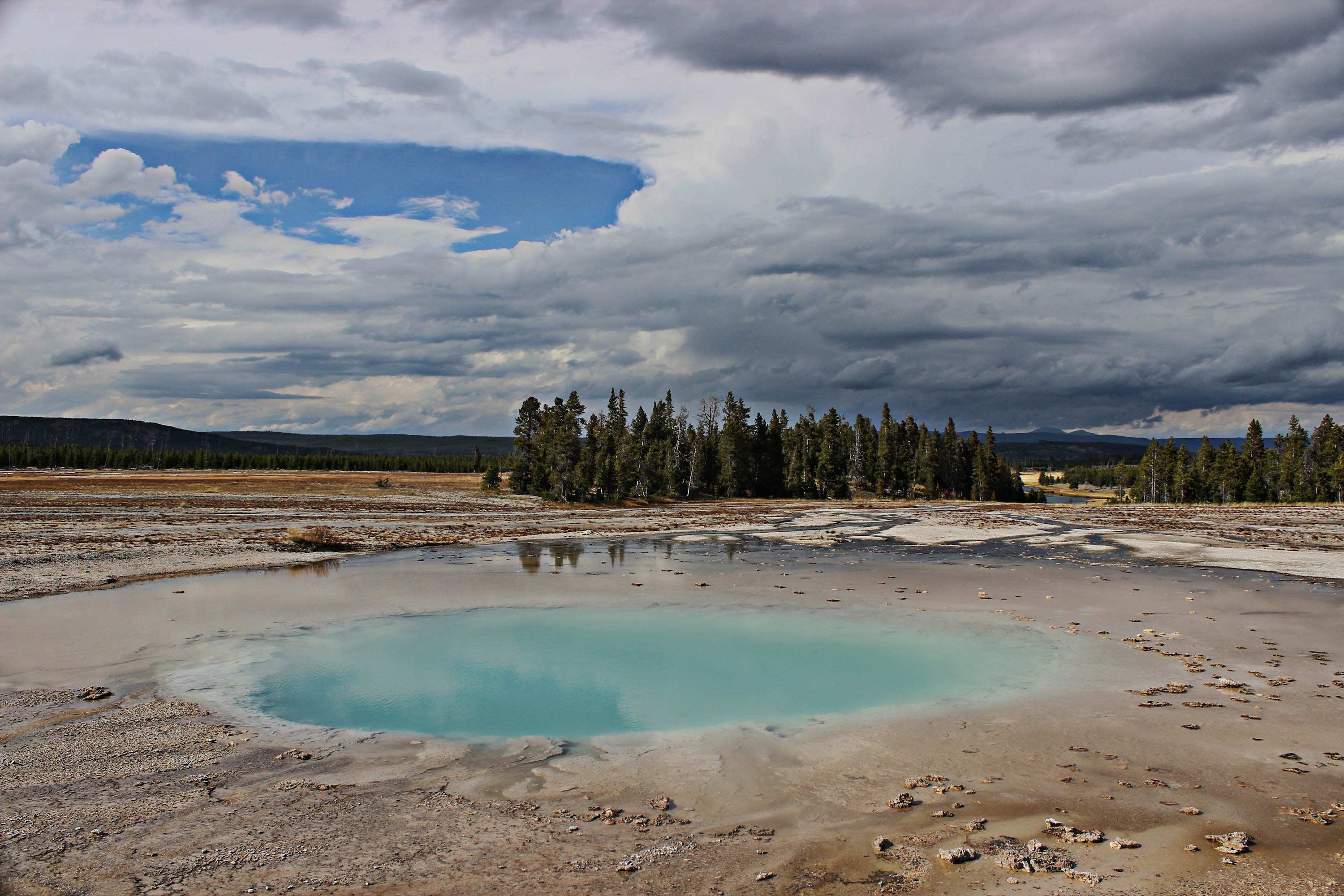 Yellowstone : entre Geysers et Bisons