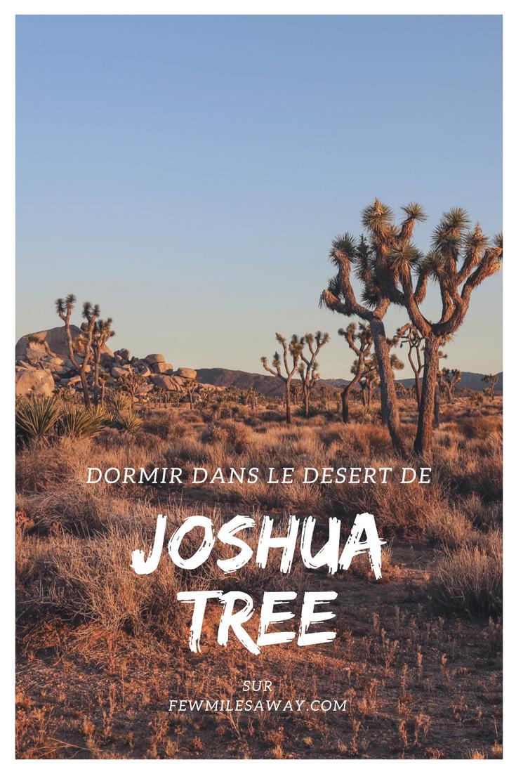 Dormir au milieux des arbres de Joshua Tree c'est possible grâce à un airbnb un peu spécial...